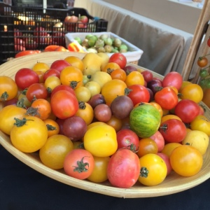 Heirloom_Baby_Tomatoes